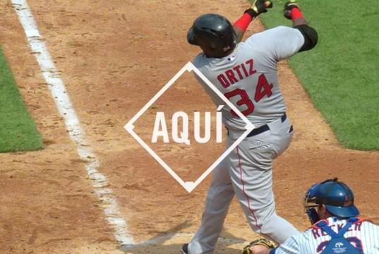 David Ortiz 494